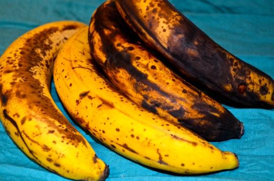 Chocolate Chip Banana Breakfast Bars