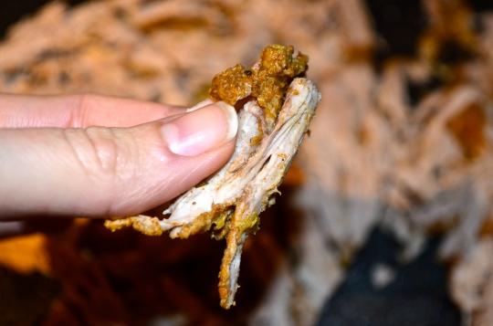 Crock pot Carnitas